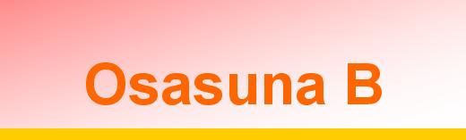 titular Osasuna B