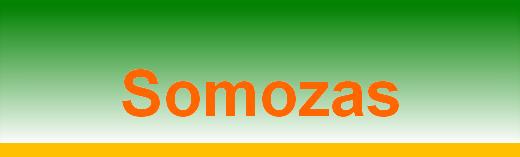 titular UD Somozas