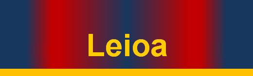 titular SD Leioa