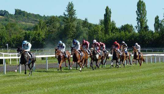 carrera caballos apuestas